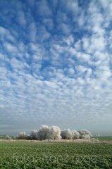 roge-landschaft-natur-047.JPG