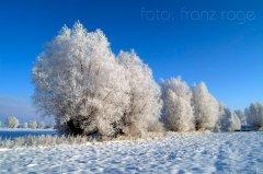 roge-landschaft-natur-056.jpg