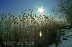 roge-landschaft-natur-057.JPG