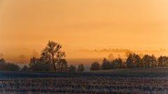 roge-landschaft-natur-321.jpg
